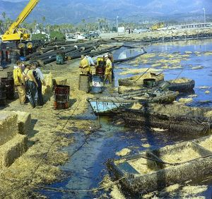 Workmen using pitchforks, rakes and shovels attempt to clean up oil-soaked straw from the beach at Santa Barbara Harbor, Calif., Feb. 7, 1969.  The oil, leaking from an off-shore well for over a week, covered local beaches and threatened many southern California shoreline areas.  (AP Photo)